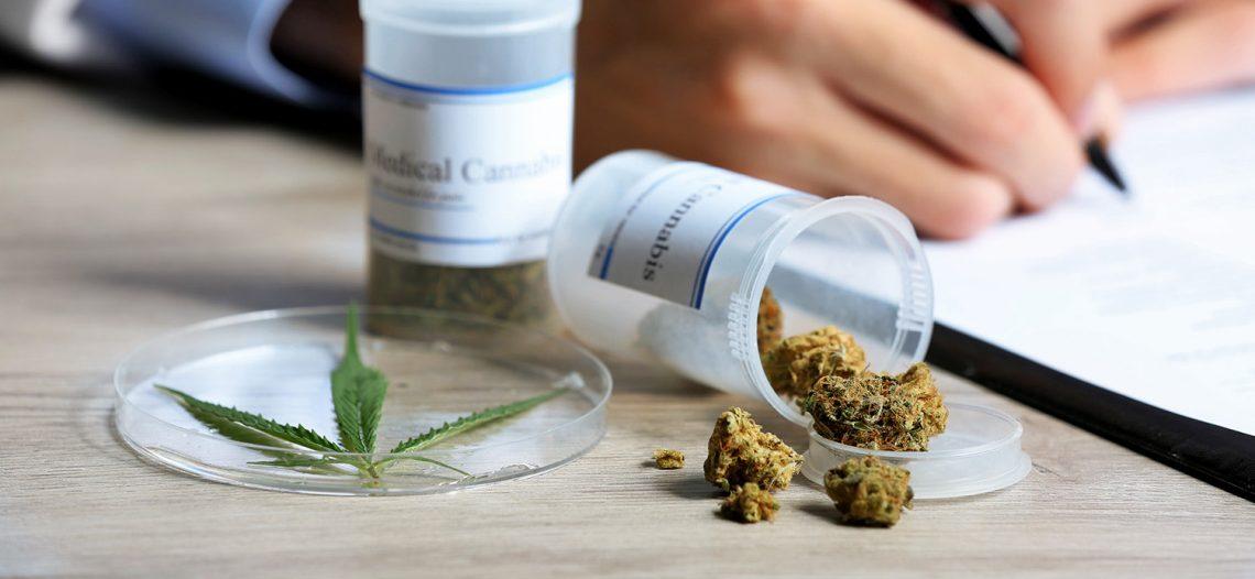 Presentan lineamientos para mariguana medicinal