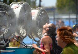 Australia registra temperaturas de casi 50 grados centígrados
