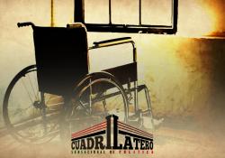 Sin vocal ejecutivo, el Consejo para Personas con Discapacidad