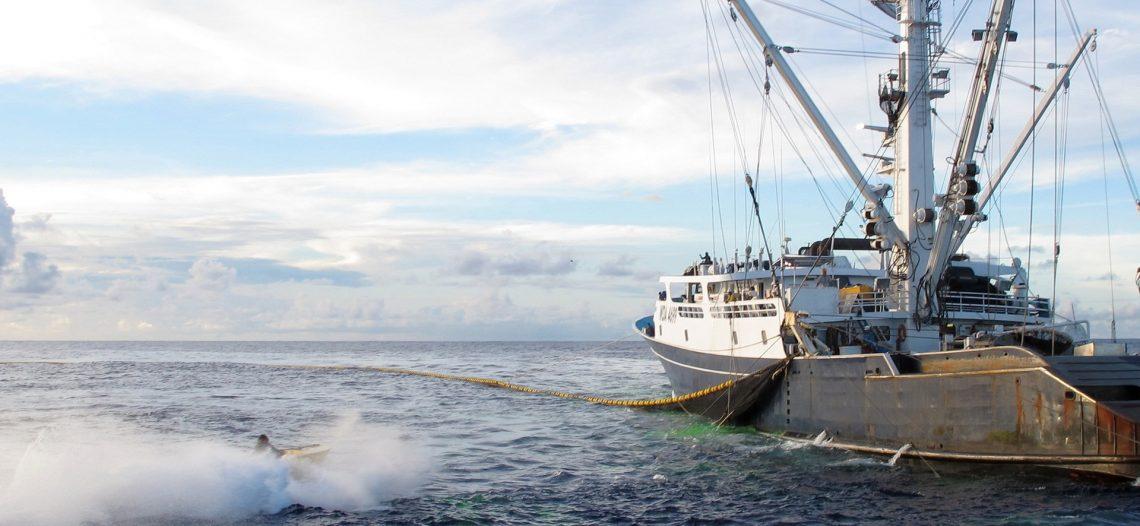 Empresarios amenazan con quemar embarcaciones que extraigan el pez dorado en BCS