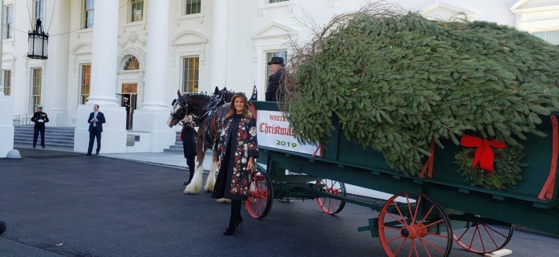 Llega la Navidad a la Casa Blanca; Melania recibe el árbol