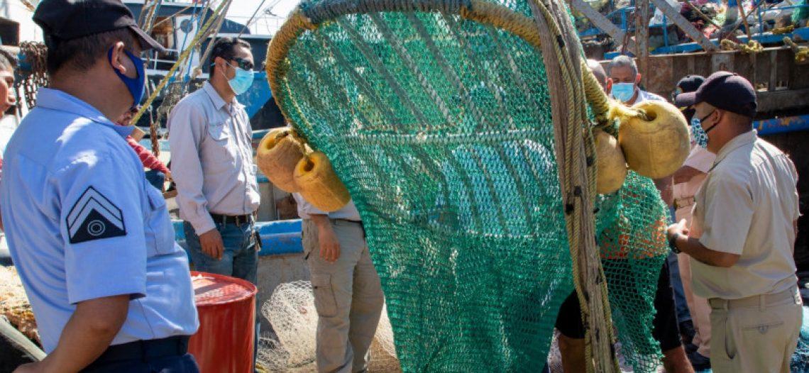 Buscarán productores nuevos mercados europeos para exportar camarón