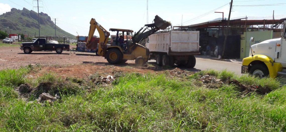 Iniciará este Miércoles el Ayuntamiento una intensa campaña de limpieza en GN