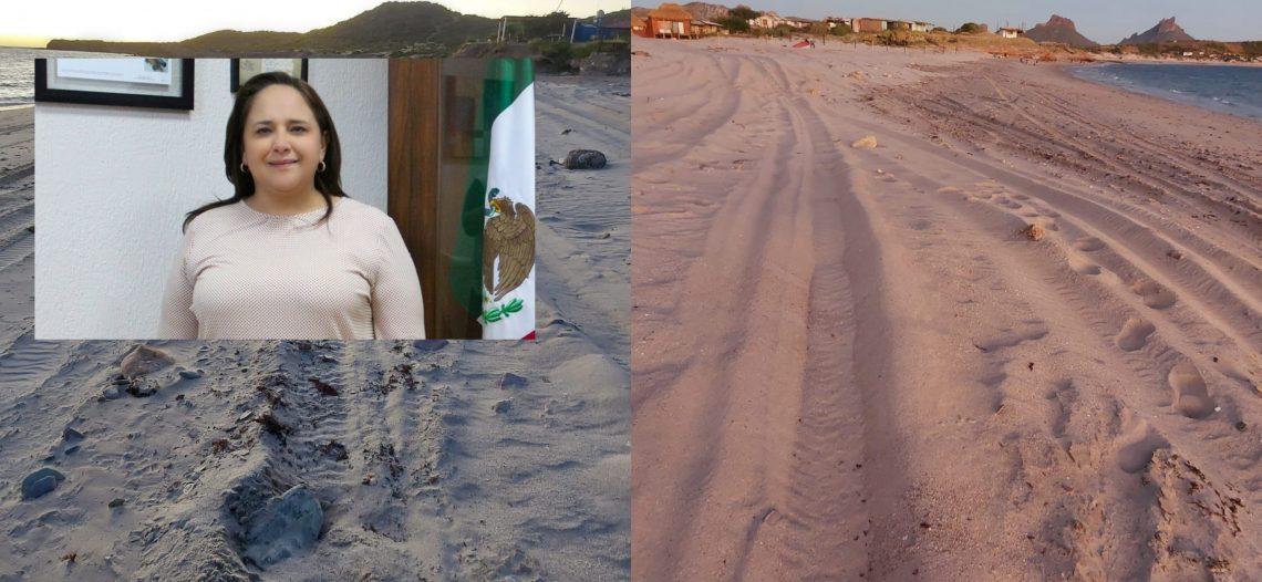 Alcaldesa Karla Córdova: Pondremos orden en playas de Guaymas